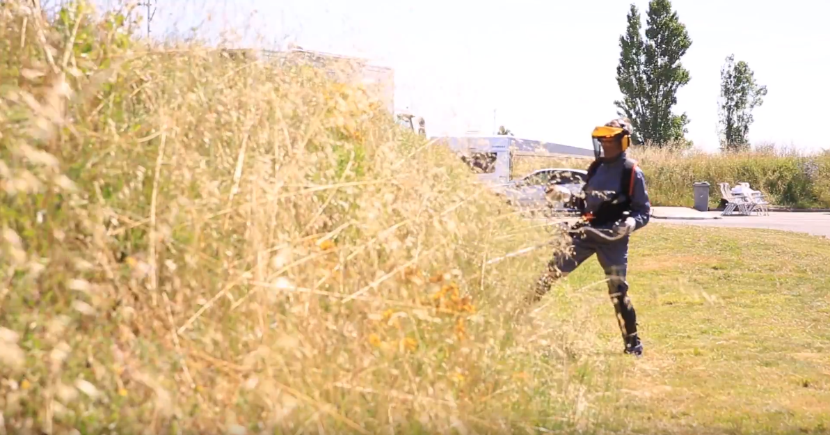 Un agent VAGO taille les haies d'un des espaces verts d'une aire